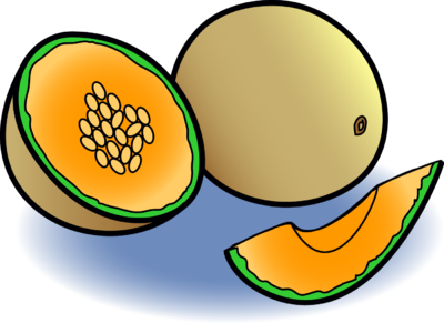 Image: Melon | Food Clip Art | Christart.com