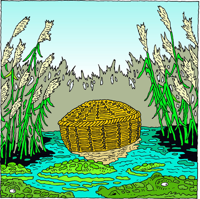 Image: She took for him an ark of bulrushes and laid it in ...