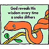 God reveals His wisdom every time a snake slithers.
