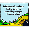 Rabbits teach us about finding safety in something stronger than ourselves
