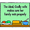 The Godly Wife Image
