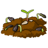 This is a drawing of seedlings growing up in soil. This is an illustration from the bible where it talks about seeds that were sown in soil. It is in reference to sharing God's Word with people.