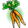 Carrots | Food Clip Art