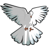 Hovering Dove | Dove Clip Art