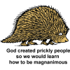 God created prickly people so we would learn how to be magnanimous
