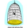"This is an image of a little black bird in a bird cage with the words below it, ""Jesus can set you free."""