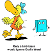 "This is a comic style image of a bird ignoring a Bible. Below are the words, ""Only a bird-brain would ignore God's Word."""