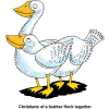 Two Geese - Christians of a feather flock together