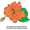We ought to be attracted to the God who made attractive flowers