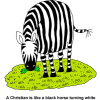 Zebra - A Christian is Like a Black Horse Turning White