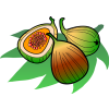 Figs | Food Clip Art