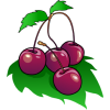 Cherries | Food Clip Art