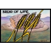 Bread of Life | Names of Jesus PowerPoint Sermons
